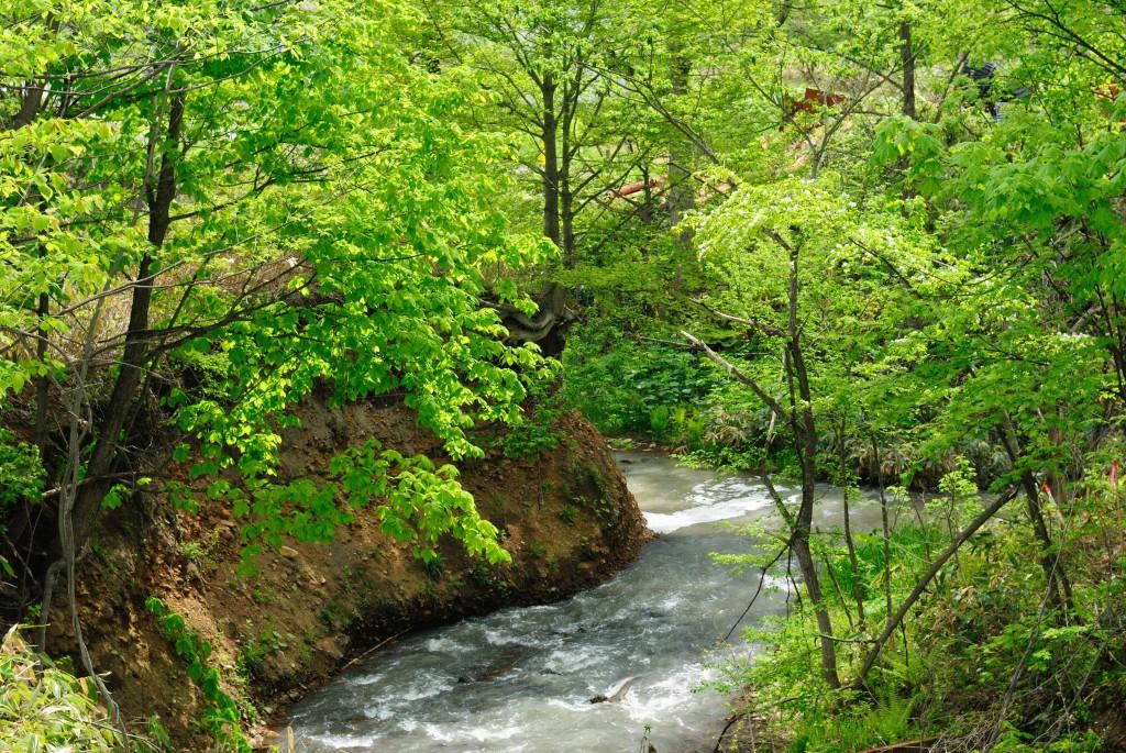 ポンクラ川と宮下川の合流点