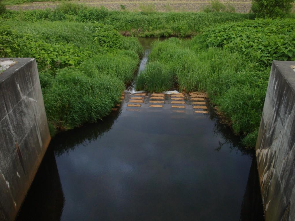 厚別川と旧豊平川の合流点