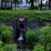 精進川と真駒内用水の合流点