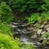 厚別川と不老の沢川(野牛沢川)の合流点