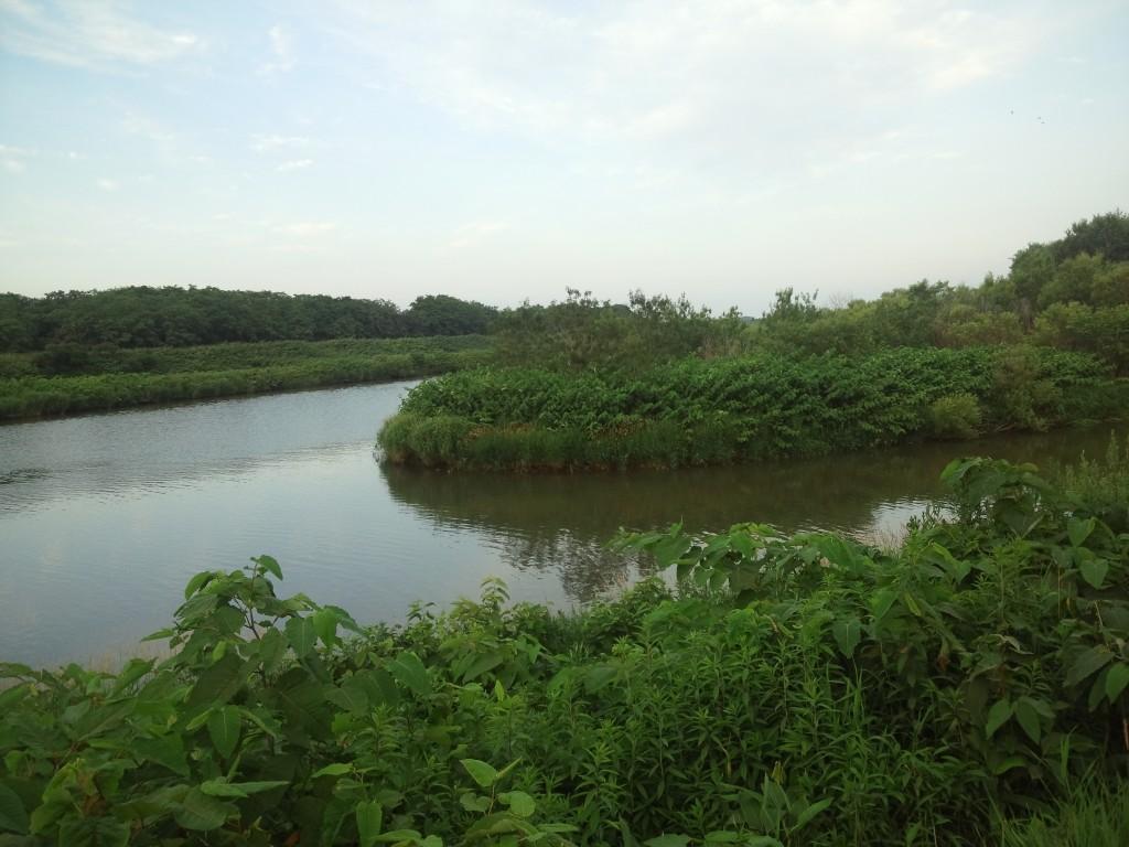新川と濁川の合流点