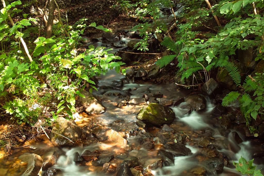 中の沢川と右中の沢川の合流点