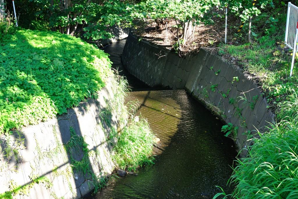 琴似川と宮の森川の合流点
