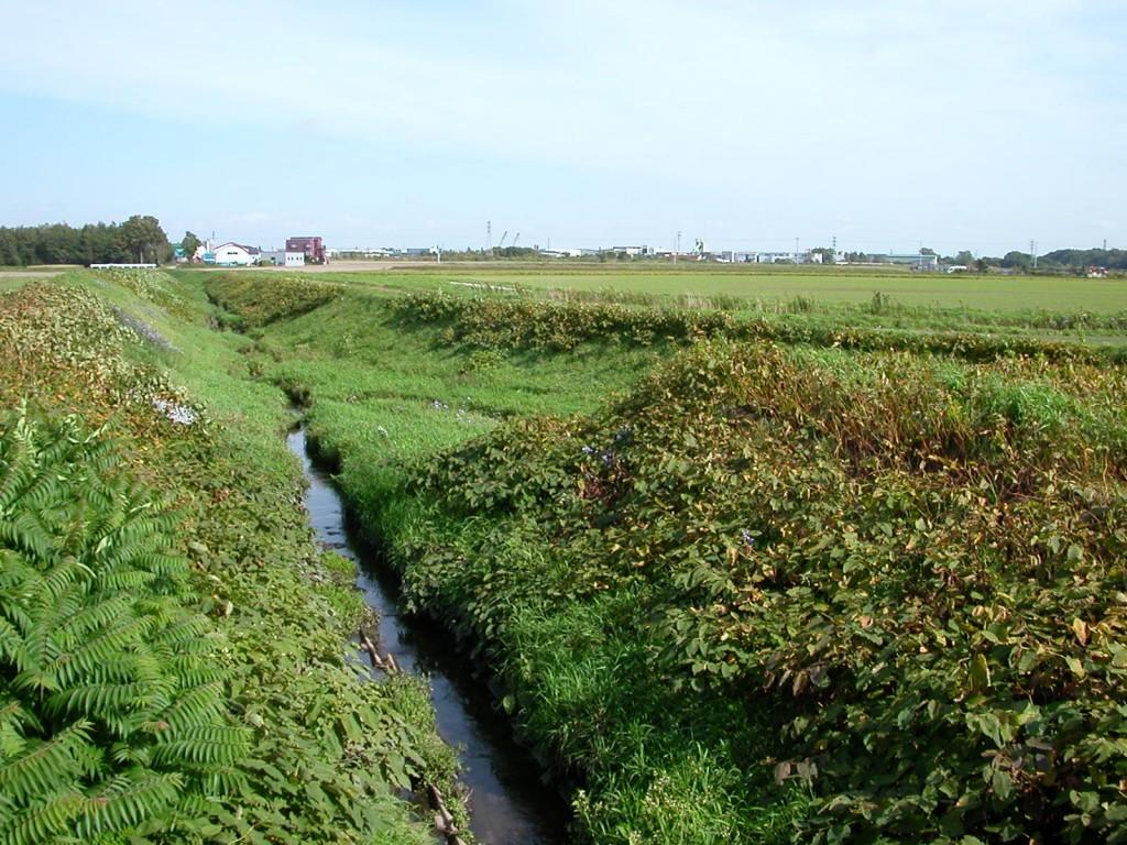 元野幌川と屯田川の合流点