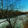 千歳川と旧夕張川の合流点