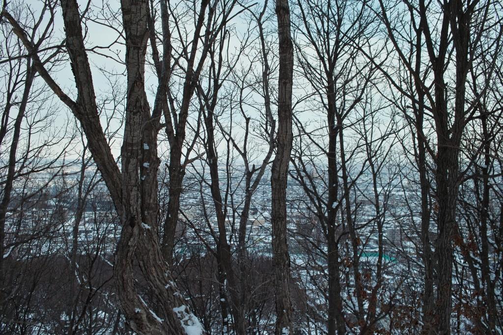 山頂から小樽方面