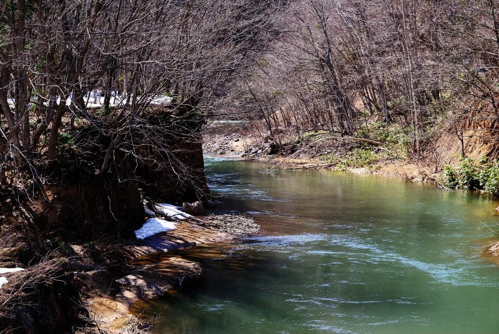 豊平川と西定山渓川の合流点