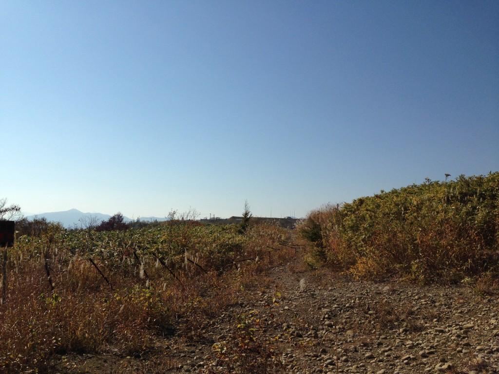 北広山山頂付近と自衛隊の演習地