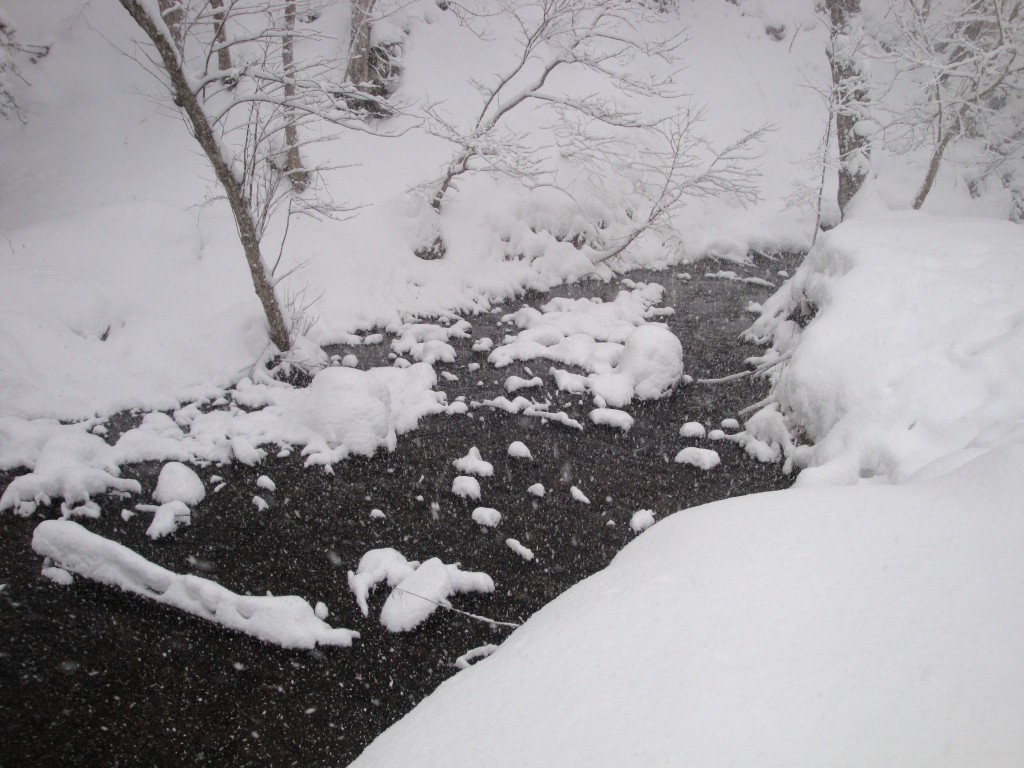 盤渓川と無名川(盤渓川支流)の合流点